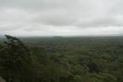 The jungle view from the top of Sigiriya