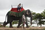 Travelling by elephant